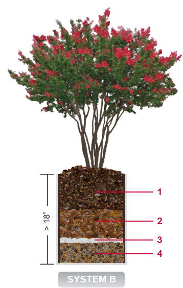 Deep Planter System Design